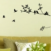 Wallsticker - Birds & Branch
